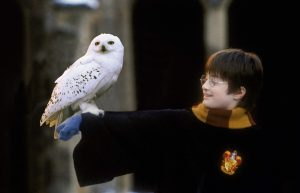 Harry Potter - 2