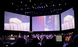 WSA2018 - Summary - Gala concert - Le Locataire