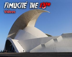 FIMUCITÉ 13 - Video Summaries